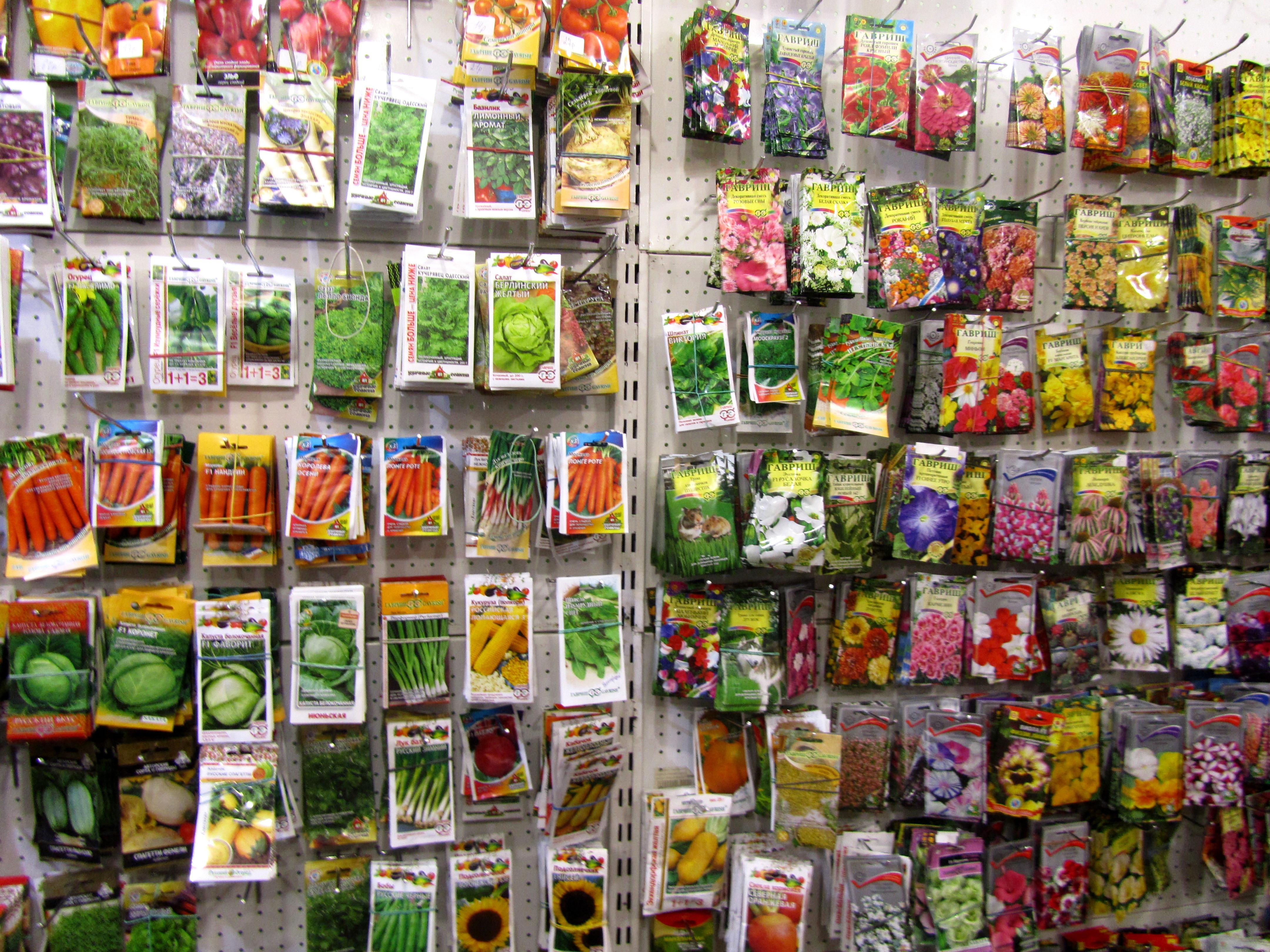 Интернет магазин семян цветов россия, праздничный букет церетели